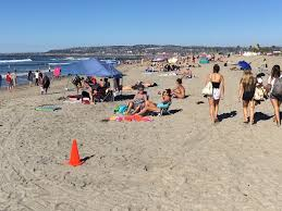45 stung by stingrays across san diego beaches ahead of