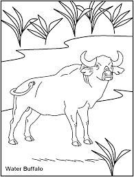 free printable dangerous animal coloring pages kids