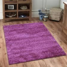 Purple Shag Area Rugs by Purple Shag Rugs Scintillating Home