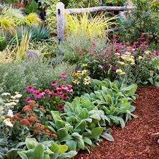 4 easy care flower bed ideas sunset