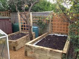 innovative timber for raised vegetable beds raised garden bed