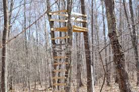 2 Person Deer Blind Plans Wood Deer Stand Plans Easy Diy Woodworking Projects Step By Step