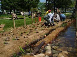 native plant nursery michigan lake cadillac demonstration site