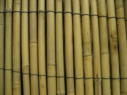 bamboo fence wide u2014 bitdigest design bamboo fence trellises ideas