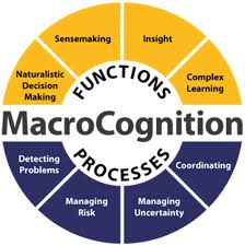 frontiers macrocognition in day to day police incident response