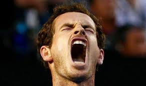 Andy Murray Meme - andy murray meme sportsfreak