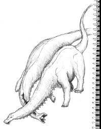 brontosaurus sauropod vertebra picture of the week