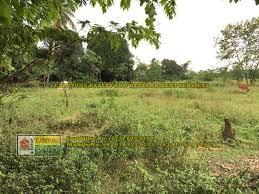 farm lots for sale u2013 capstone realty philippines u2013 la union