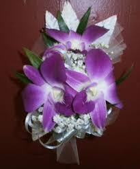 orchid wrist corsage dendrobium orchid corsage wrist corsage in east meadow ny east