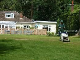 grass cutting gardening u0026 landscaping services gumtree