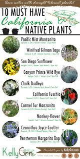 kellygrn u0026 39 s 10 must have california native plants kellygrn