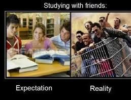 Stupid Friends Meme - friends show stupid meme show best of the funny meme