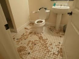 Sewage Coming Out Of Bathtub 25 Best Sebring Restoration Services Images On Pinterest