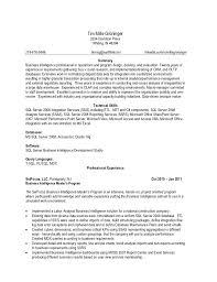 T Sql Resume Resume