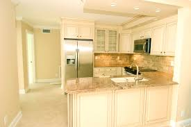 Kitchen Remodel Before And After With Cost Bathroom Interesting Elegant Condo Remodel Kitchens Decor Best