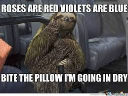 Angry Sloth Meme - funny sloth rape memes roses are red violets are blue bite the