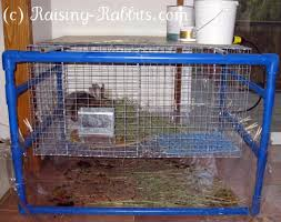 Build Your Own Rabbit Hutch For Your Indoor Rabbit Cages Make Life Easy With A Convenient