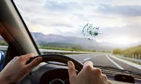 mobile windshield replacement cascade auto glass groupon