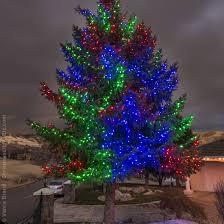 how to wrap christmas lights around a tree how to wrap a tree with lights christmas lights etc blog