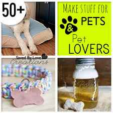 diy things to make for pets and pet diy things