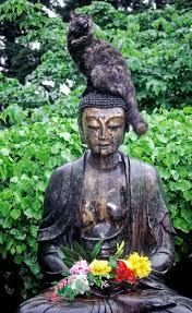 146 best buddhas images on buddha statues buddhism