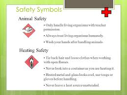 safety in the science lab rules and symbols lab safety everyone