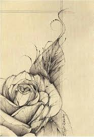 12 best roses images on pinterest draw abstract and board