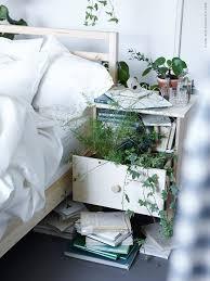 Ikea Plant Ideas by 274 Best Selina Lake House Plants Images On Pinterest Plants