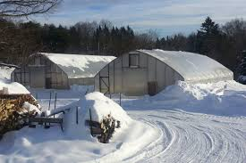 winter the hottest thing in farming civil eats new technology and growing demand for local food is making winter farming more possible than ever