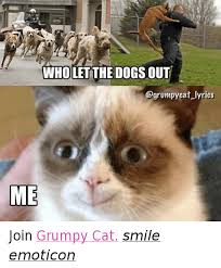 Dog Smiling Meme - wholet the dogs out cat lyrics me join grumpy cat smile emoticon