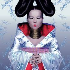Bjork Raise Your Flag Finger In The Socket Fashion May 2011