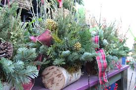 christmas tree delivery the produce station plants flowers arbor mi