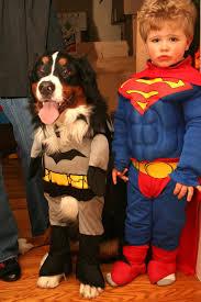 Dog Halloween Costumes Kids Dog Owners Dog Halloween Costumes Kids