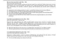 Resume Summaries Examples by Ceo Resume Examples Sample Chief Executive Officer Writing