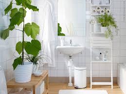 bathroom phenomenal plants glossy pure white furnitureh chic fresh