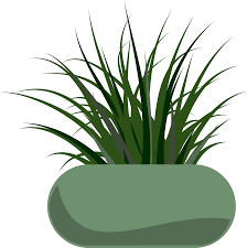 best free grass potted plants file