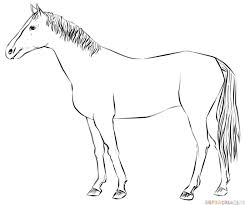 how to draw a realistic horse standing step by step drawing