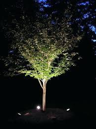 Landscape Lighting Ideas Trees Landscape Uplight Nomadik Co