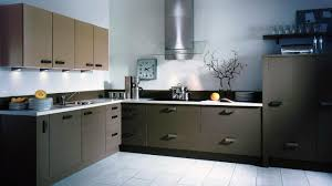 Contemporary Style Kitchen Cabinets Contemporary Kitchens Modern Decorating Style Ideas Kitchen