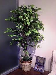 Plante Artificielle Exterieur Ikea by Choisir Des Plantes Artificielles Marie Claire