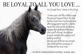 Saying Goodbye Love Quotes by A Special Christmas U2013 Loyalty Love And Horses Carmelrowley Com Au