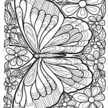 detailed butterfly coloring pages for adults coloring pages of butterflies for adults give the best coloring