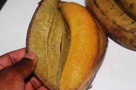 cuisiner le plantain recettes du cameroun le plantain pilé