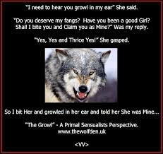 Wolf Memes - wolf memes the wolf den