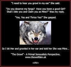 Wolf Meme - wolf memes the wolf den