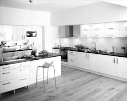 modern kitchen design ideas 2012 caruba info