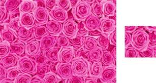 pink wrapping paper wrapping paper by photowrap 2