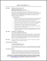 It Executive Resume Examples by Resume Sample For A Sales Executive