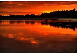 cuando inicia black friday en amazon the amazon and the wonders of brazil houston adventure people
