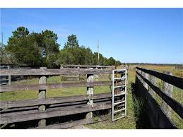 County Line Sale Barn 10885 Lily County Line Rd Ona Fl 33865 Mls D5921348